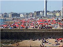 TQ3103 : Brighton Beach by Robin Webster