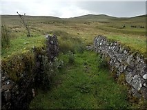 NS2472 : Overflow of disused reservoir by Lairich Rig