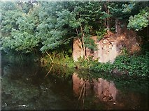 SE2436 : Ruined quarry building by the canal at Newlay Bridge by Stephen Craven