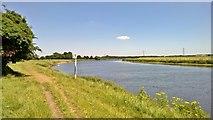 SK6443 : 12 km on River Trent at Burton Joyce by Chris Morgan