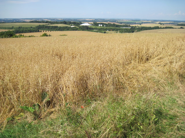 From Telegraph Hill towards Satellite Teleport
