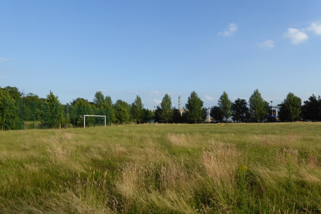 Image result for football pitch long grass