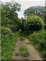 NZ1781 : Public bridleway towards Stannington by Graham Robson