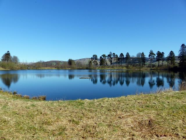 The Lochan, Moffat Community Nature Reserve