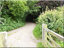 TQ6668 : London Countryway in Kent (33) by Shazz