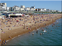 TQ3103 : Brighton beach and sea front by Robin Webster