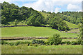 NY4902 : Fields and woods west of the River Sprint by Nigel Brown