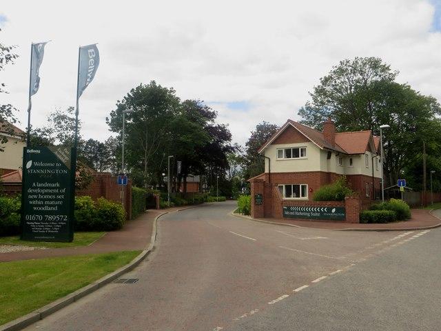 Entrance into Stannington Park
