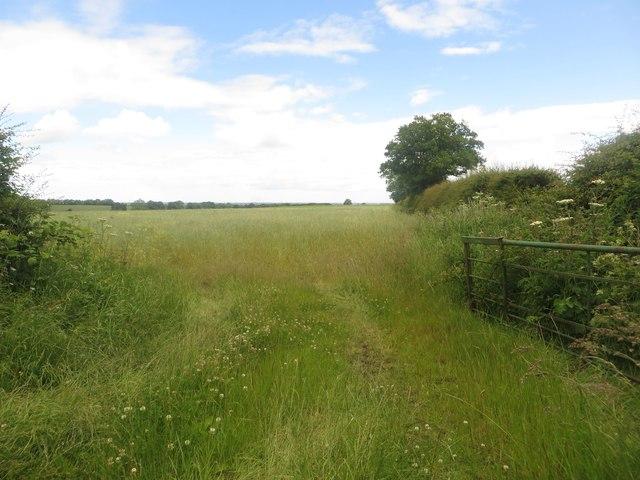 Grass field gateway