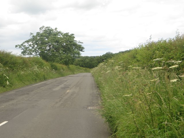Country road south of Tranwell