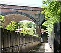 SJ9695 : Looking under Godley Arches by Gerald England