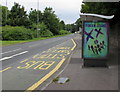 ST2885 : Suicide Squad advert on an A48 bus shelter, Newport by Jaggery