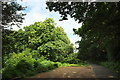 SU1716 : Car park near Castle Hill by Derek Harper