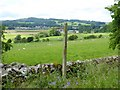 NY4530 : Fields at Millrigg Farm and a prospect of Greystoke by Oliver Dixon