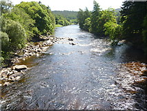 NO2694 : River Dee [2] by Michael Dibb