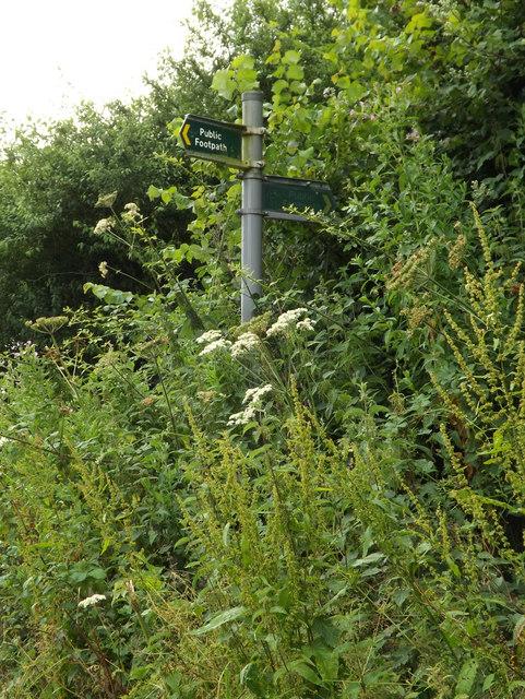 Footpath/Bridleway sign on Cromer Hyde Lane