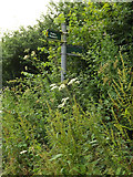 TL2012 : Footpath/Bridleway sign on Cromer Hyde Lane by Adrian Cable