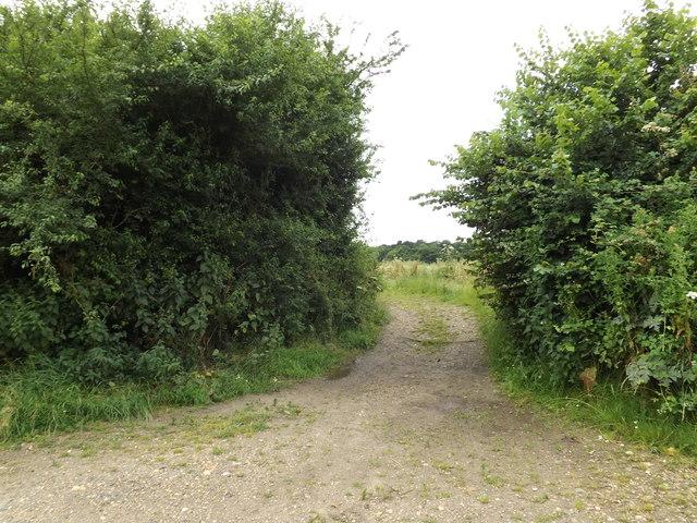 Bridleway to Hammond's Lane