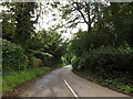 TL1916 : Bibbs Hall Lane, Ayot St.Lawrence by Adrian Cable