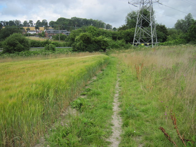 Water Lane track towards Alton