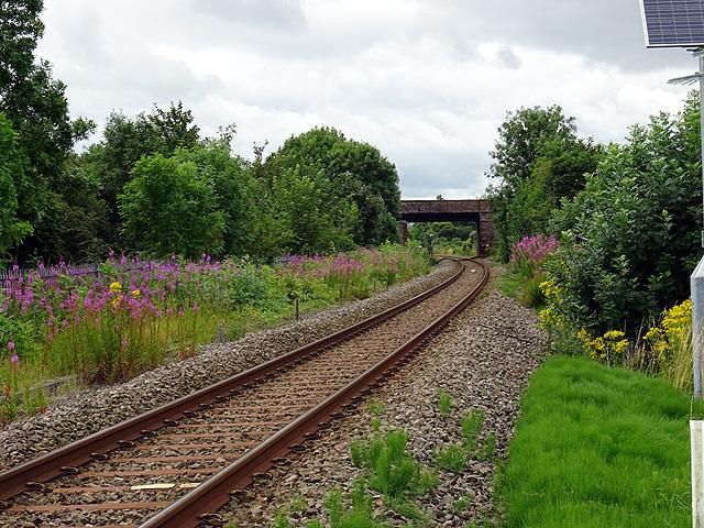 Near the site of Meole Brace Station