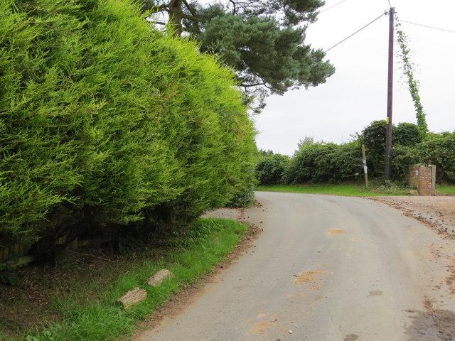 Lane near Upper Farm at Drointon