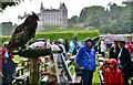 NC8500 : Dunrobin Castle Falconry Display: The rains came just as the display ended by Michael Garlick