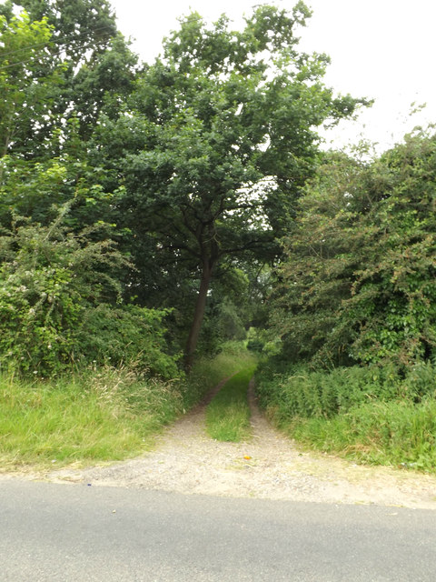 Fen Lane Footpath to the A1066 Thetford Road
