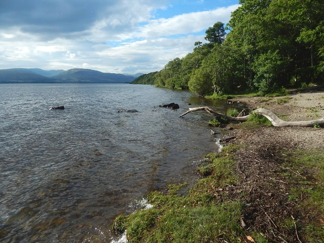 The shore at Balloch Park
