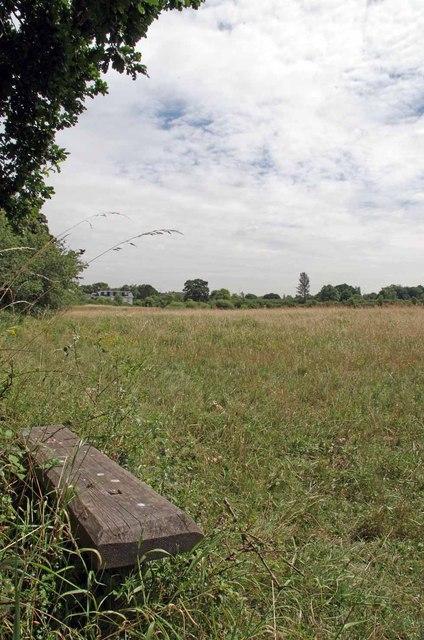 Seat in Thornwood Flood Meadow