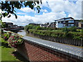 TF4609 : Flowers and The River Nene - Wisbech in Bloom 2016 by Richard Humphrey