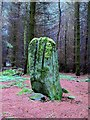 NZ0677 : Bygate Hill Standing Stone by Andrew Curtis