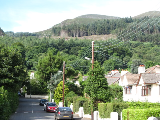 Donard Forest from Shan Slieve Drive, Newcastle