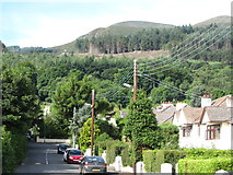 J3630 : Donard Forest from Shan Slieve Drive, Newcastle by Eric Jones