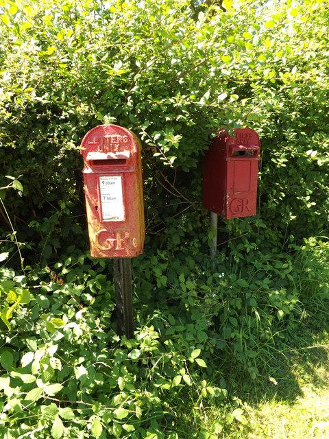 Low Common George V  Postbox & Birdbox