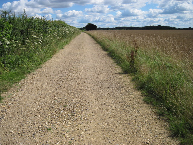 Track near West Tisted