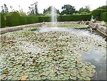 TQ5243 : Diana's Bath, Penshurst Place by Marathon