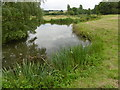 TQ5344 : Former fish pond at Penshurst Place by Marathon