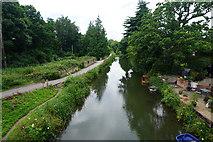 SO8104 : Stroudwater Canal by Bill Boaden