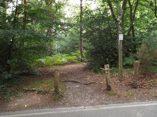 Permissive bridleway on Keston Common