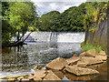 SD7913 : Burrs Weir, River Irwell by David Dixon