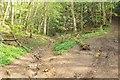 ST5068 : Path junction, Bourton Combe by Derek Harper