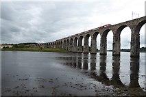 NT9953 : Royal Border Bridge by DS Pugh