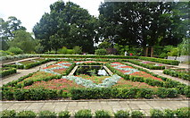 TQ3473 : The Dye Garden, Horniman Museum Gardens, Forest Hill by pam fray