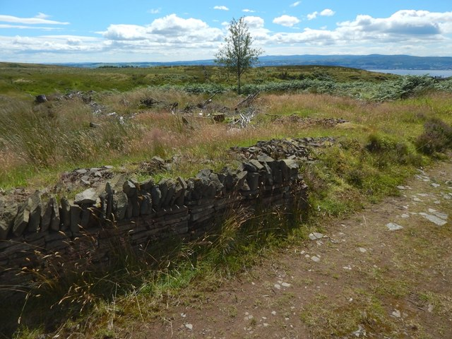 Old and new dry-stone walls