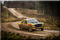 NY3933 : Greystoke Rally Stage by Brian Deegan