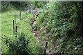 SO1800 : Fence & stream near Hafodrisclawdd-isaf by M J Roscoe