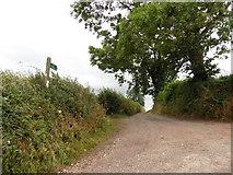 ST0007 : Track to Ponsford Farm by Roger Cornfoot