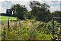 SD3818 : Churchtown Moss by Ian Greig