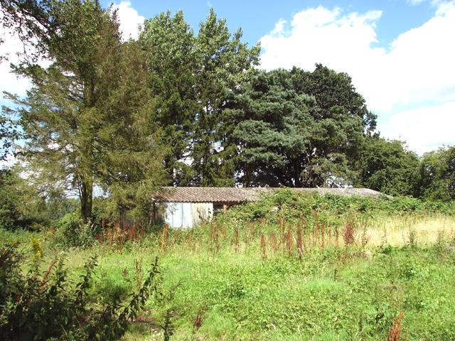 Disused Laing hut